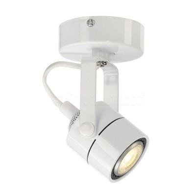 Світильник Spot-79 SLV 132021